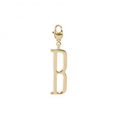 B Initial Charm